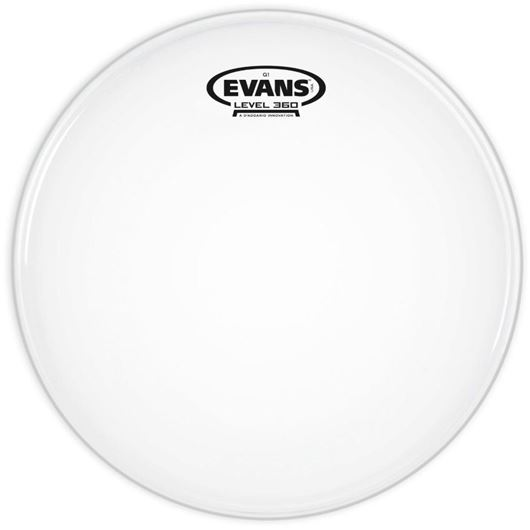 Evans 10 B10G1 Tom Coated einlagig